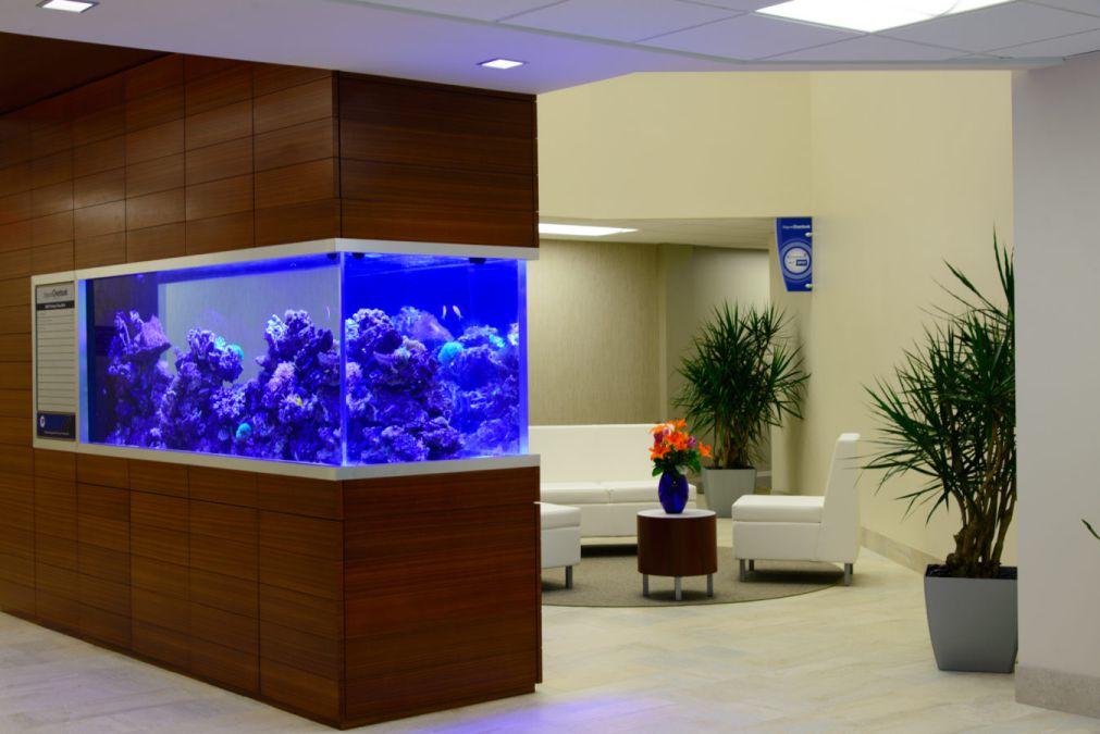 aquarium 12