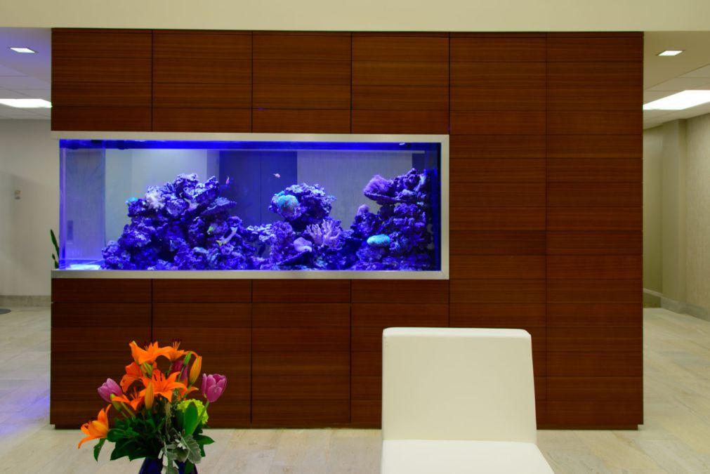 Aquarium Gallery 13.jpg