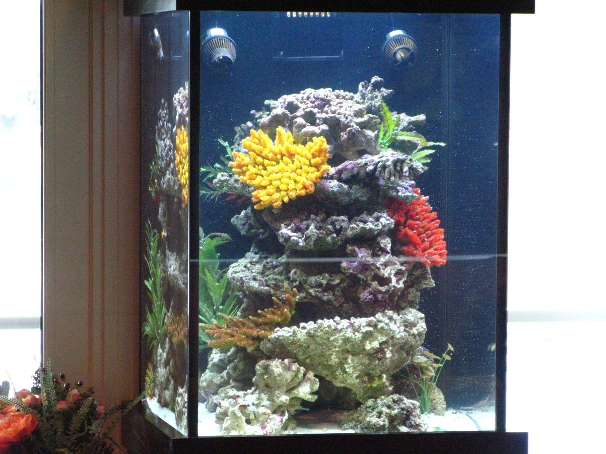 aquarium 45