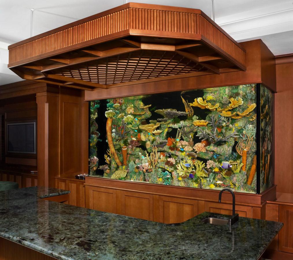aquarium 57