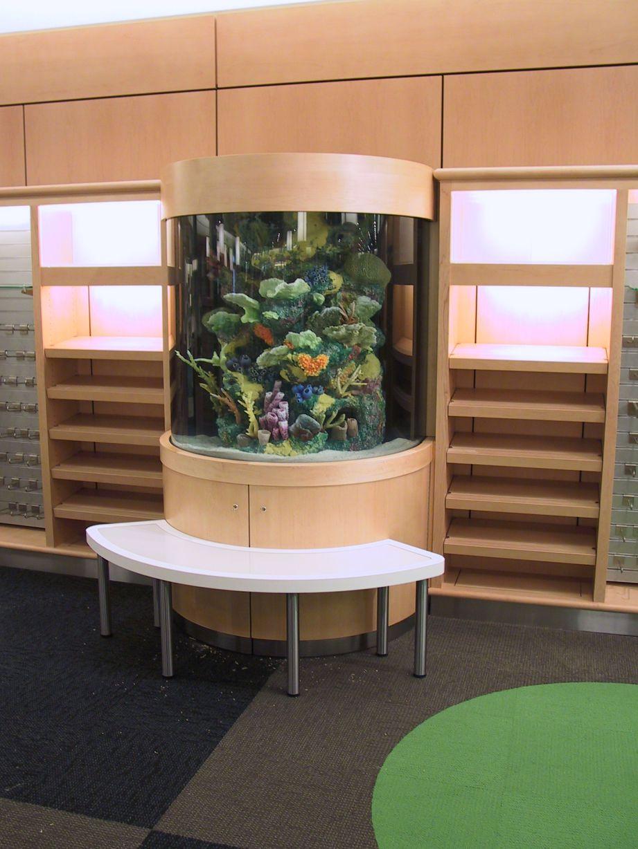 aquarium 62