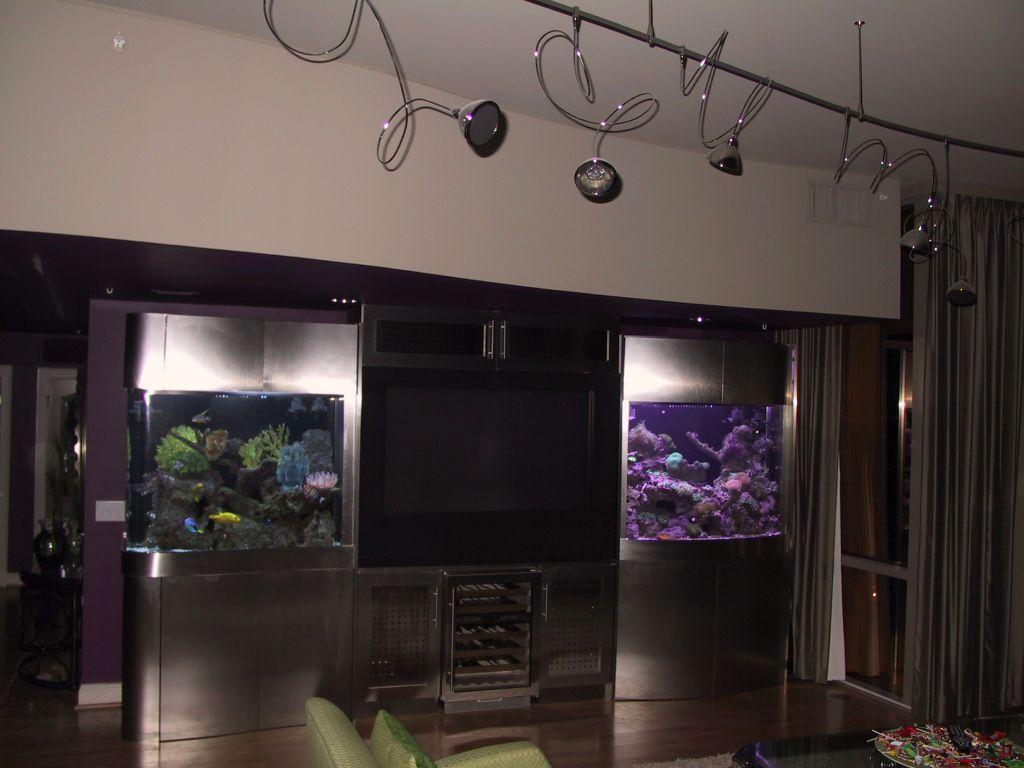aquarium 68