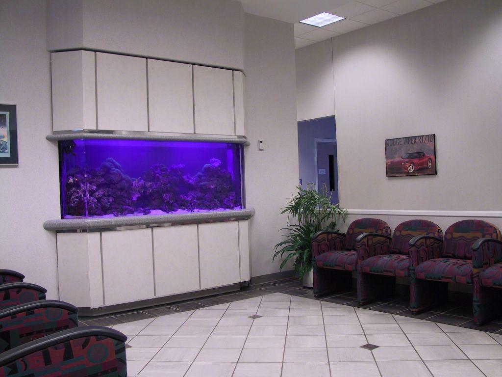 aquarium 77