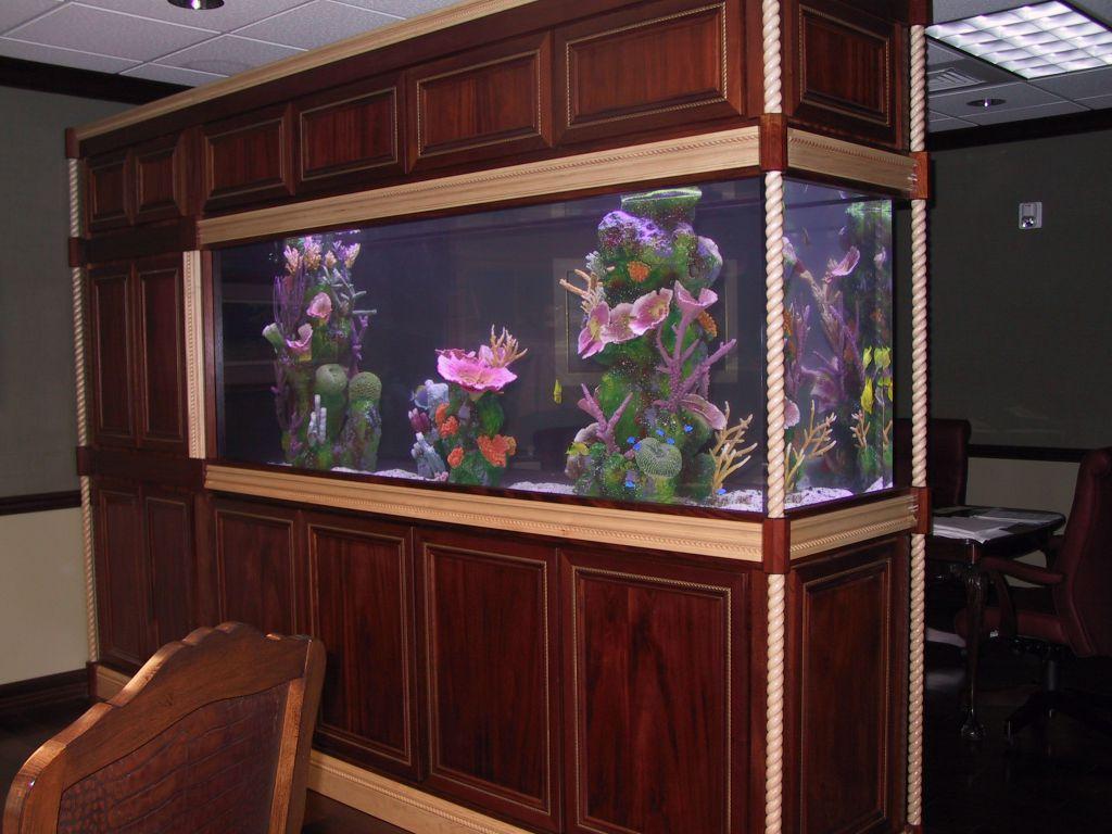 aquarium 79