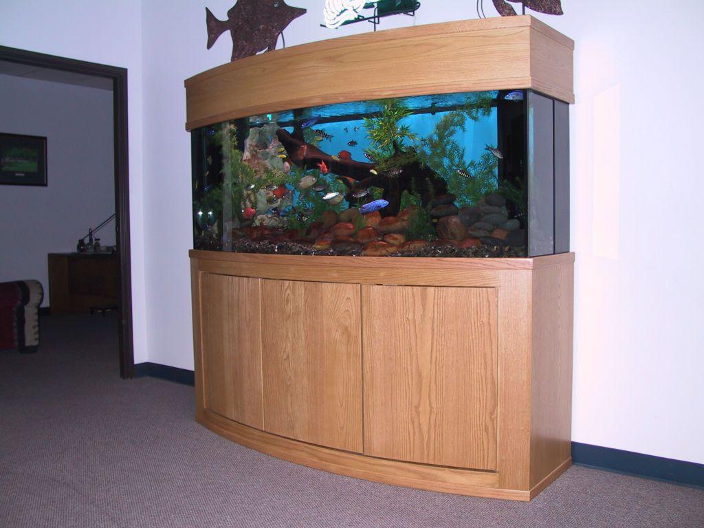 aquarium 81