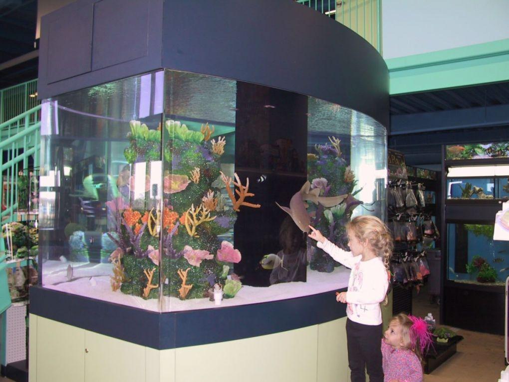 aquarium 87