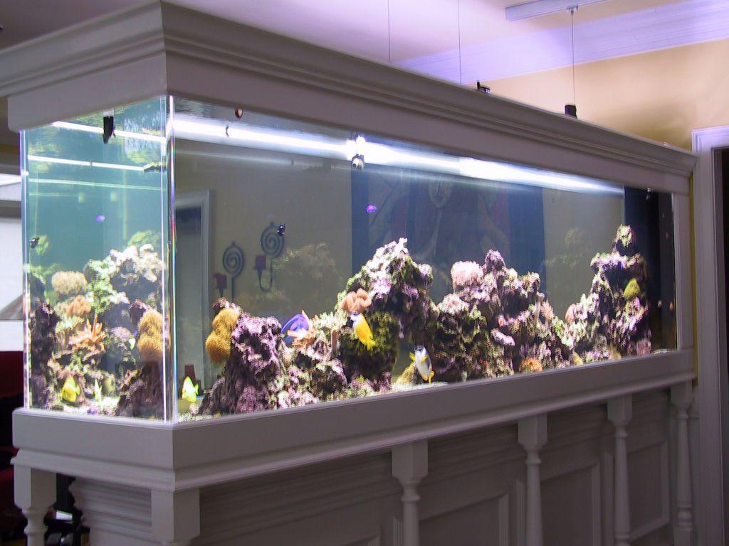 aquarium 90