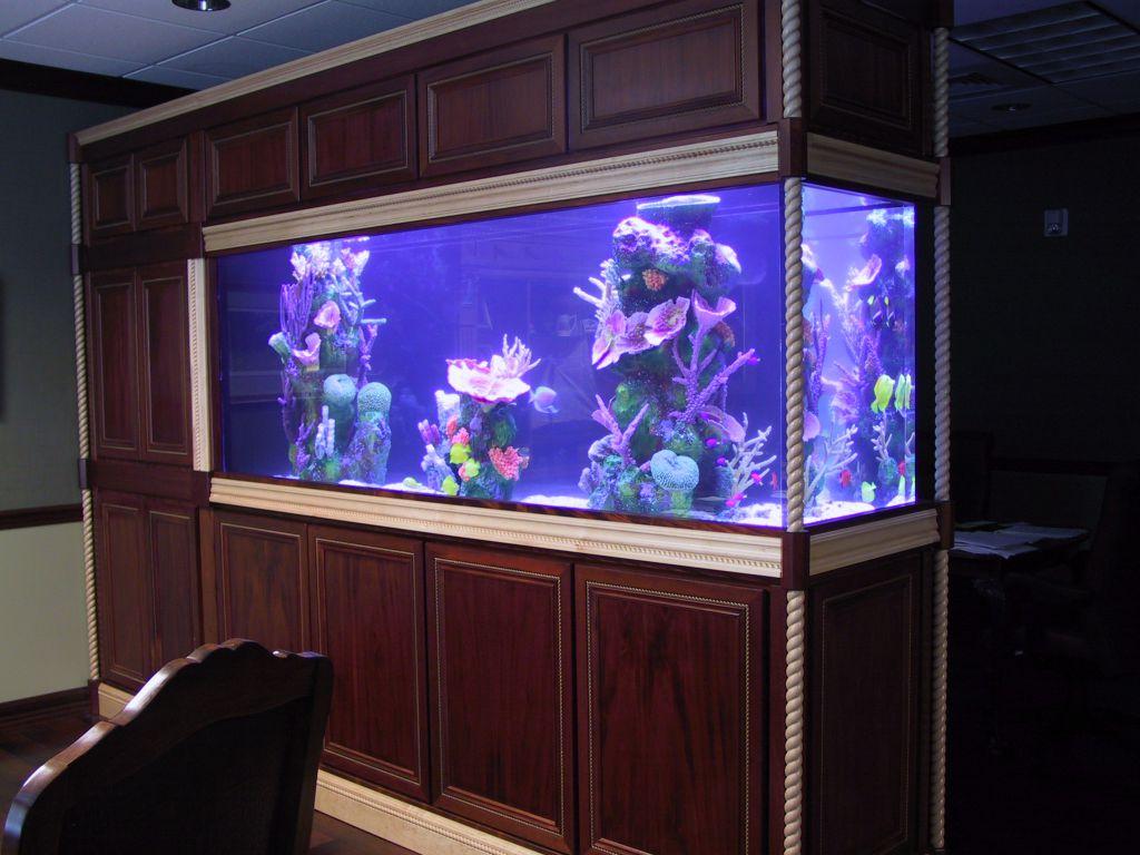 aquarium 93