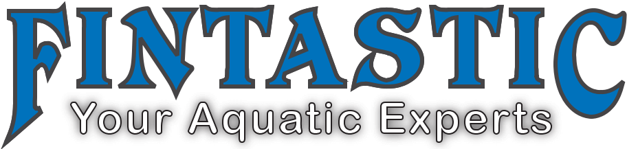 Fintastic Logo
