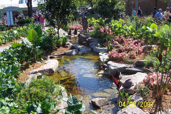 pond_gallery 11