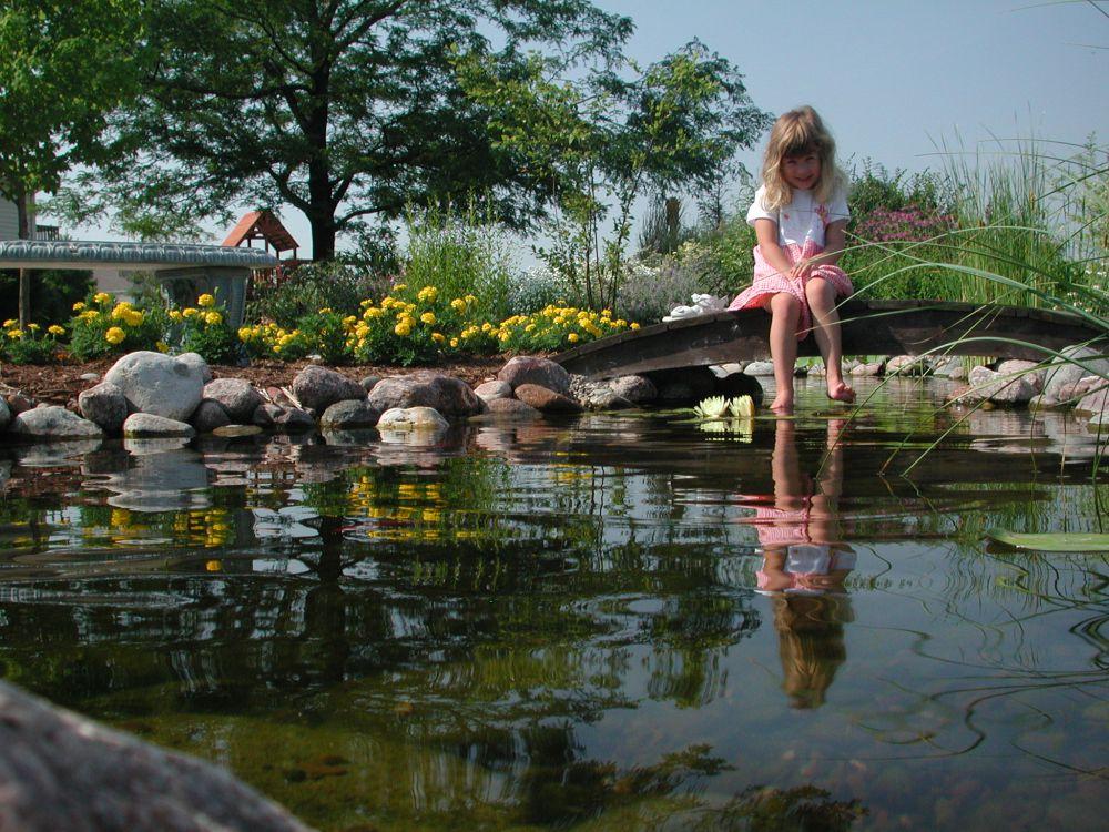 pond_gallery 28
