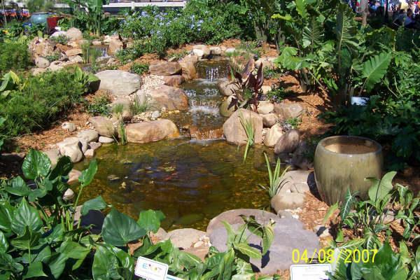 pond_gallery 3