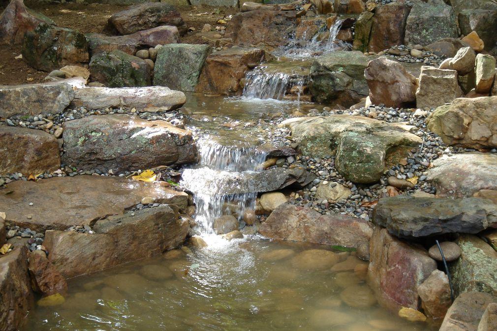 pond_gallery 42