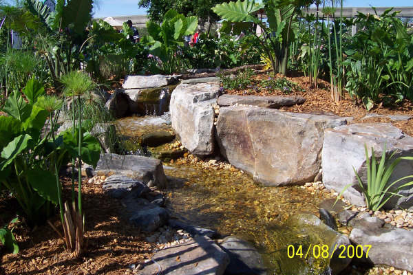 pond_gallery 6